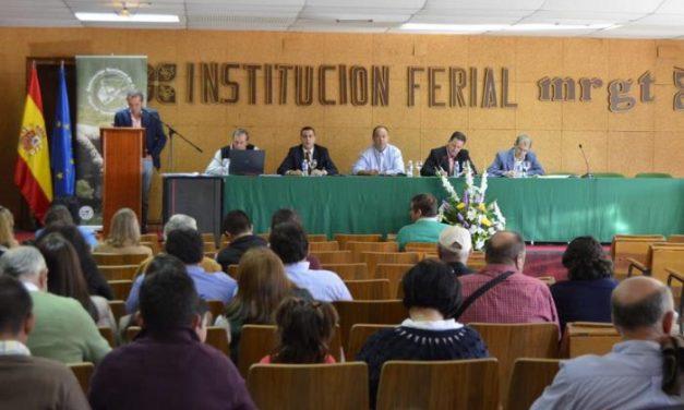 La subasta de ovino de la Feria de Trujillo adjudica el 97% de las hembras y el 82% de los machos