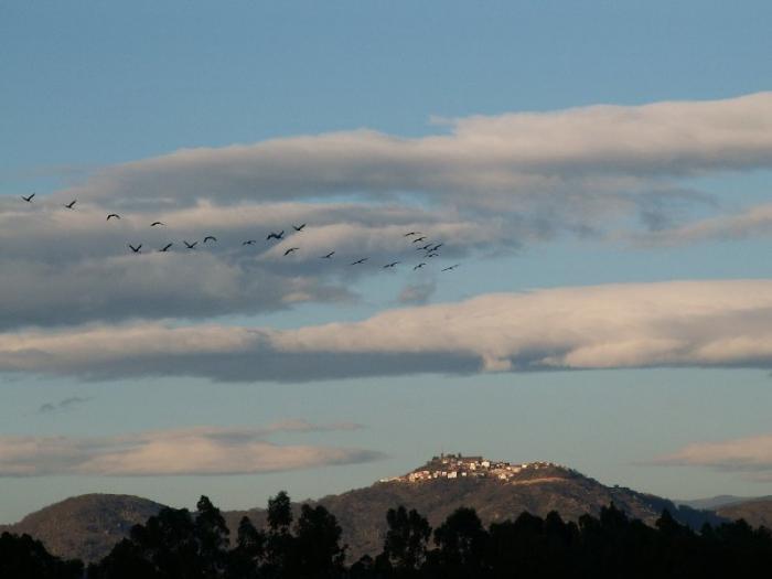 El Ayuntamiento de Moraleja destaca la importancia del turismo ornitológico para promocionar la localidad