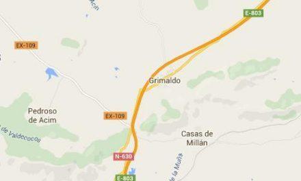 Un varón fallece tras colisionar su turismo con un camión en la A-66 cerca de Grimaldo