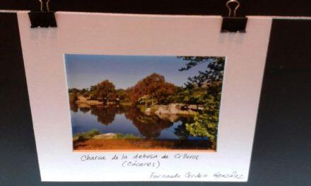 Un vecino de Cilleros expone una de sus fotografías en el stand de Extremadura en Fitur