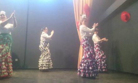 El Festival de Flamenco Solidario de Rincón del Obispo recauda cerca de 600 euros a favor de ALCER