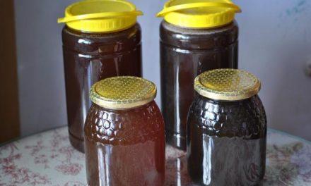 Extremadura se consolida como la tercera región productora de miel a nivel nacional