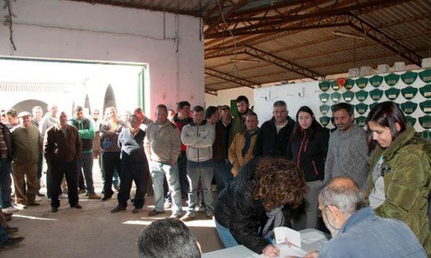 Diputación Provincial de Cáceres sortea más de dos centenares de ejemplares de merino precoz