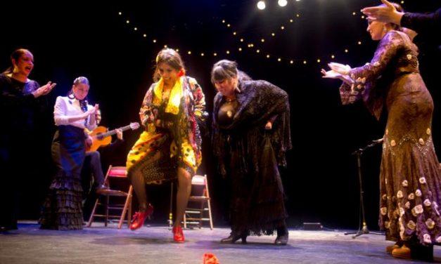 Más de una decena de cantaores participa en la segunda fase del Concurso de Cante Flamenco Mayorga