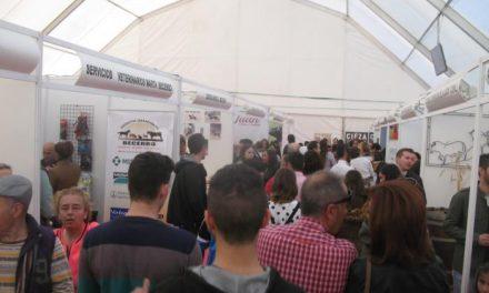 """Ballestero define como """"masiva"""" la afluencia de público a la III Feria del Toro de Coria"""