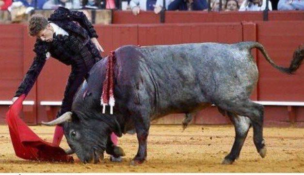 Indultan un astado de Victorino Martín en la corrida celebrada este miércoles en la Maestranza de Sevilla