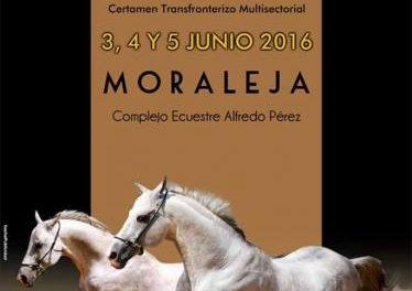 El Club Hípico de Moraleja y la Asociación de Empresarios celebrarán del 3 al 5 de junio el I Salón Ibérico del Caballo