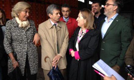 La Junta exige a la ministra de Fomento agilizar las obras de la N-110 entre Navaconcejo y Tornavacas