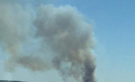Efectivos del Infoex trabajan en la extinción de un incendio en una finca de toros bravos de Portaje