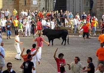 Los Sanjuanes de Coria finalizan con dos heridos por asta de toro de diversa consideración