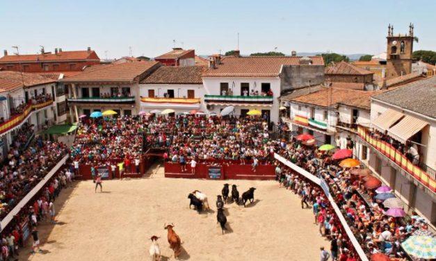 La suelta del toro de esta tarde en las fiestas de San Buenaventura de Moraleja cambia de lugar