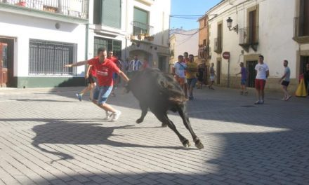 Ningún herido en la suelta del segundo toro de la tarde en los festejos de San Buenaventura