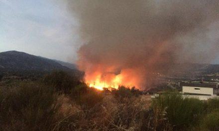 Cuatro incendios provocados ponen en alerta a la ciudad de Plasencia durante la madrugada