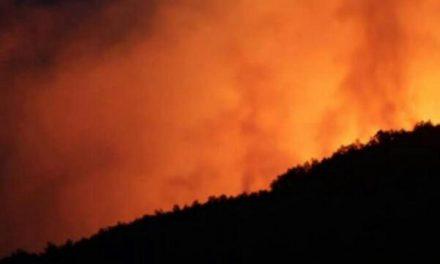 Medio Ambiente activa el Nivel 2 de peligrosidad para el incendio del Jerte al solicitar refuerzos de medios aéreos