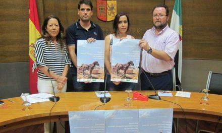 Torrejoncillo celebrará su XVIII Encuentro Ecuestre y Artesano con la presencia de 70 caballos a concurso