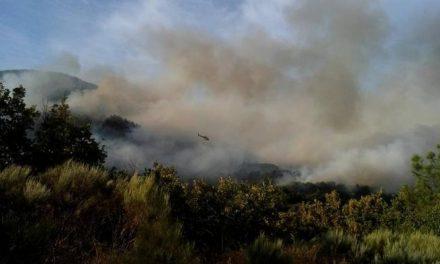 El Infoex da por controlado el incendio declarado el pasado miécoles en San Martín de Trevejo