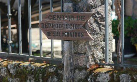La Junta destina más de 400.000 euros al Centro de Reproducción de Salmónidos del Jerte