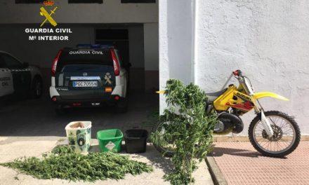 La Guardia Civil detiene a los presuntos autores del robo de animales en el Refugio San Jorge de Cáceres