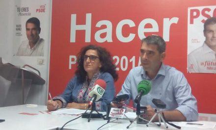 El PSOE de Plasencia denuncia que el Parque de Procasa sigue en peligro de derrumbe