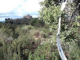Portezuelo prepara ya la X Subida al Castillo que tendrá lugar el próximo 5 de noviembre