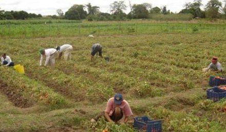 """Las asociaciones ven un """"futuro esperanzador"""" para la Agrupación de Cooperativas Agrarias"""