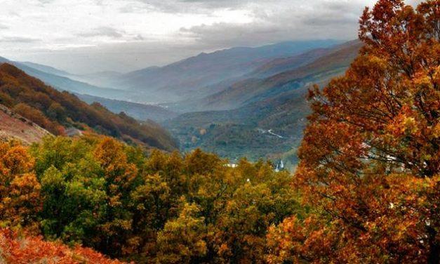 El Valle del Jerte da la bienvenida al otoño con la celebración de la XIV Otoñada