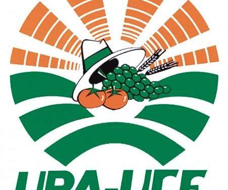 UPA-UCE niega la existencia de un entramado financiero ilegal en base a las ayudas europeas