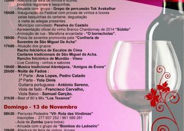 Idanha-a-Nova espera recibir unas 4.000 personas en el Festival de Vinos y Licores de San Miguel de Acha