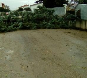 Las lluvias y vientos registrados este viernes obligan a cerrar varios espacios en Moraleja
