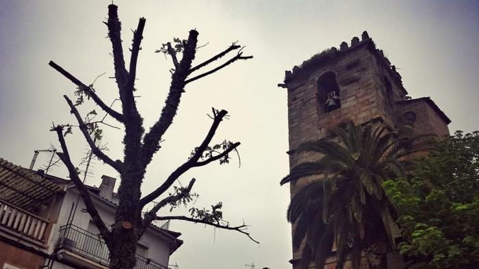 Torre de Don Miguel alerta a los vecinos de un presunto vendedor ambulante que se dedica a robar