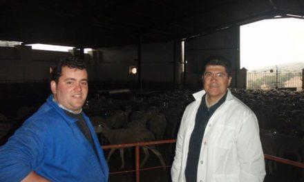 La Universidad mejicana de Chiapas estudia el sistema de producción del queso de la Serena con denominación