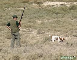 La Federación Extremeña de Caza propone medidas para la recuperación de la caza menor en la región