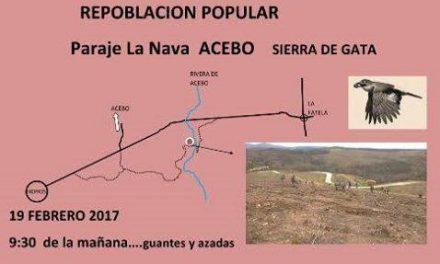 El paraje de La Nava en Sierra de Gata acogerá este domingo una jornada popular de replantación
