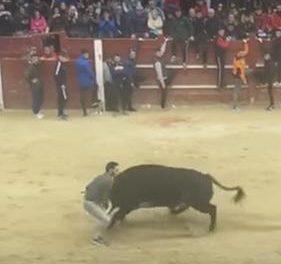 El recortador de Coria corneado en Ciudad Rodrigo se recupera favorablemente en un hospital de Salamanca