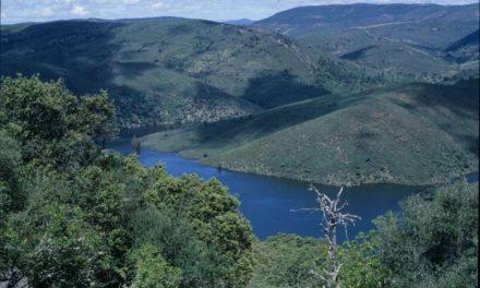 Monfragüe celebrará el décimo aniversario de su declaración como Parque Nacional con actividades