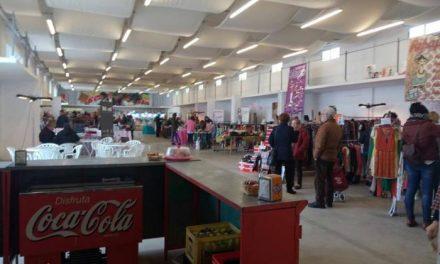 La XIII Feria del Stock de Moraleja finaliza con un balance positivo por parte de la organización