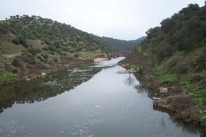 Aparecen restos humanos flotando en el río Almonte a su paso por el término de Garrovillas