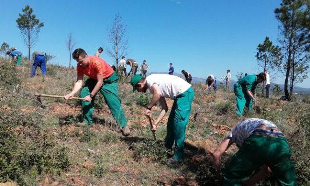 El Centro de Formación Rural de Moraleja estudia en la Sierra de Gata la evolución del monte tras un incendio