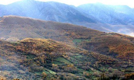 Las solicitudes para ayudas LEADER en el Valle del Ambroz podrán presentarse a partir del lunes