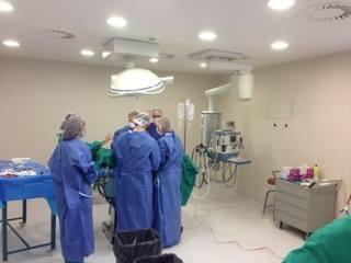 Un centenar de cirujanos de diferentes países se dará cita en Plasencia en el Congreso Nacional de Cirugía Taurina