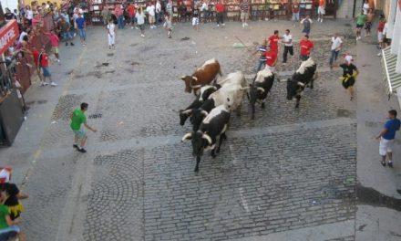 Moraleja convoca el Certamen de Carteles de San Buenaventura con un único premio de 400 euros