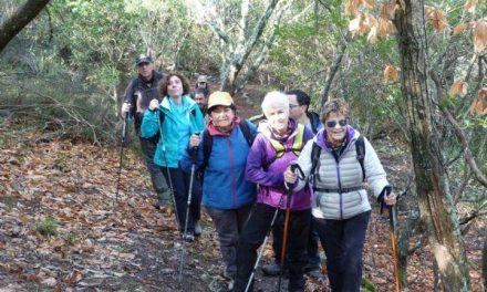 La asociación El Bordón de Plasencia llevará a cabo una ruta de Villar de Plasencia a Plasencia este domingo