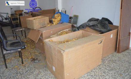La Policía Nacional detiene a dos jóvenes por un delito de contrabando de más de 400 kilos de tabaco en Badajoz