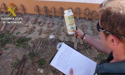 Detienen a tres personas por supuestamente envenenar a tres águilas y dos milanos en Trujillo y Sierra de San Pedro