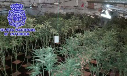 La Policía Nacional desmantela un punto de venta de marihuana en Malpartida de Plasencia