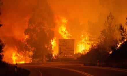 El número de fallecidos en el incendio de Pedrogão Grande asciende a más de 60 personas
