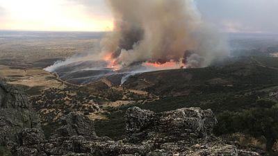 El incendio declarado en la tarde de este lunes en el municipio de Portezuelo se encuentra controlado