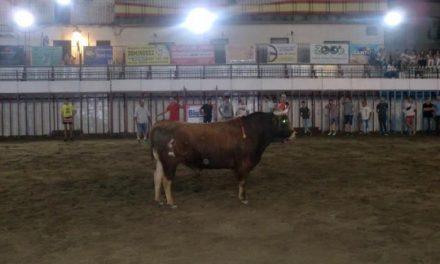 La lidia del primer toro del aguardiente de San Buenaventura finaliza sin heridos