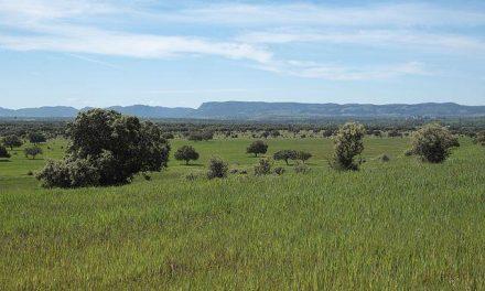 APAG denuncia la actitud de las administraciones implicadas en la candidatura de la Reserva de la Biosfera