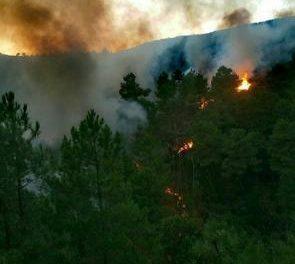 El incendio registrado desde este domingo en el término municipal de Gata se da por extinguido